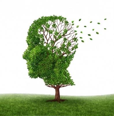 Болезнь Альцгеймера — страшная болезнь разрушающая мозг